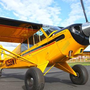 piper 1 300x300 - Купить самолет