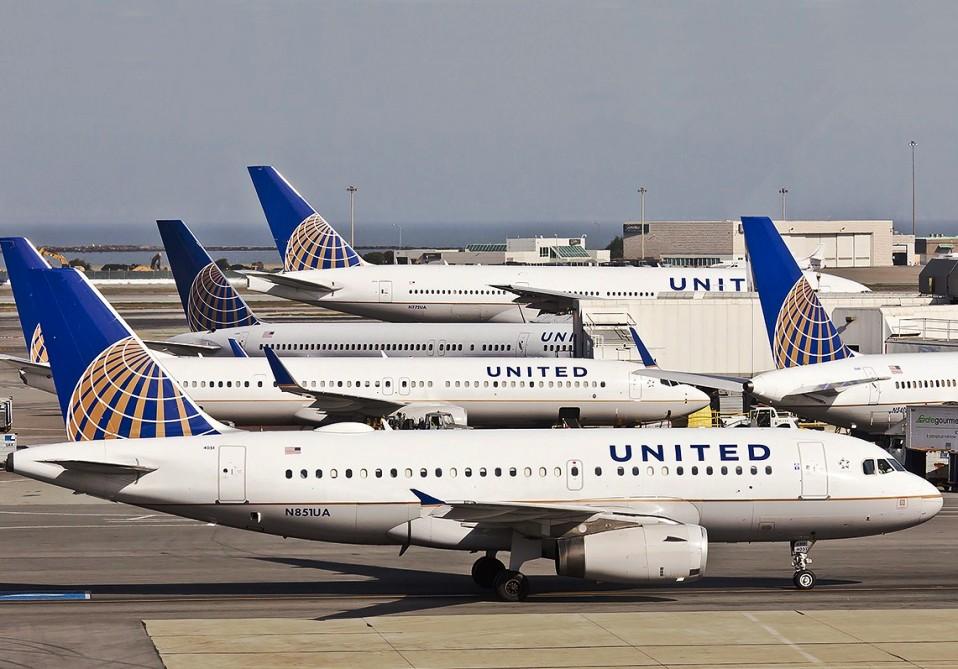 Clip2net 170727162158 - На авиакомпанию United Airlines подали в суд из-за гибели кролика