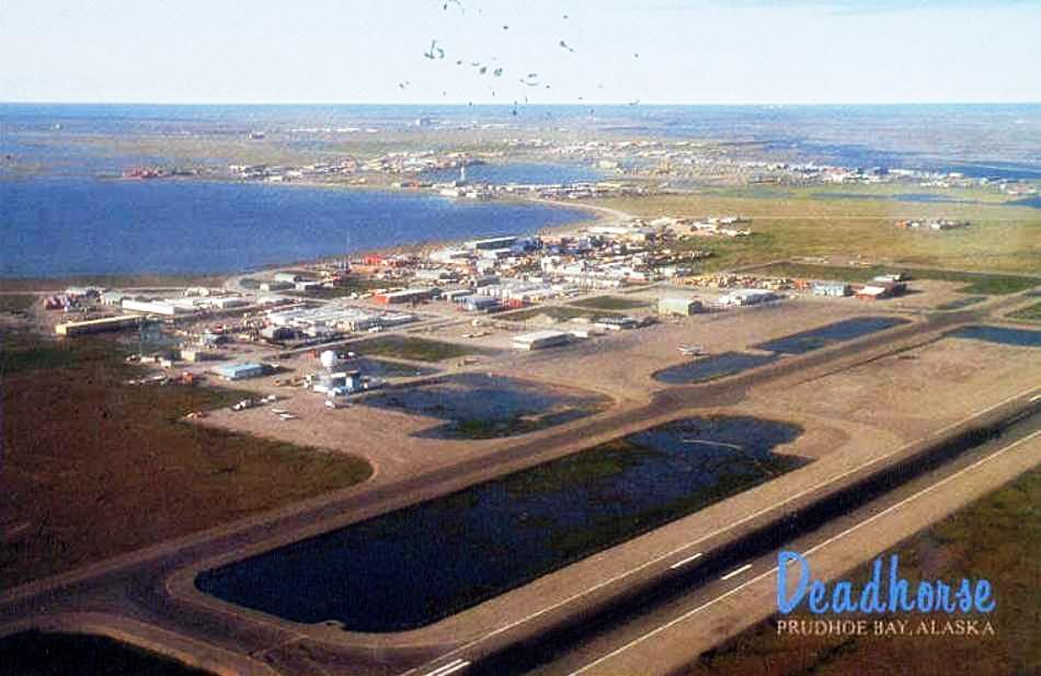 TJ109 - На Аляске Boeing 737 при посадке сбил карибу