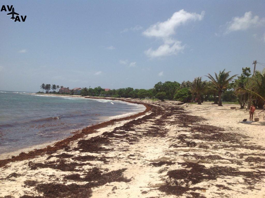 Отдых на острове Гваделупа