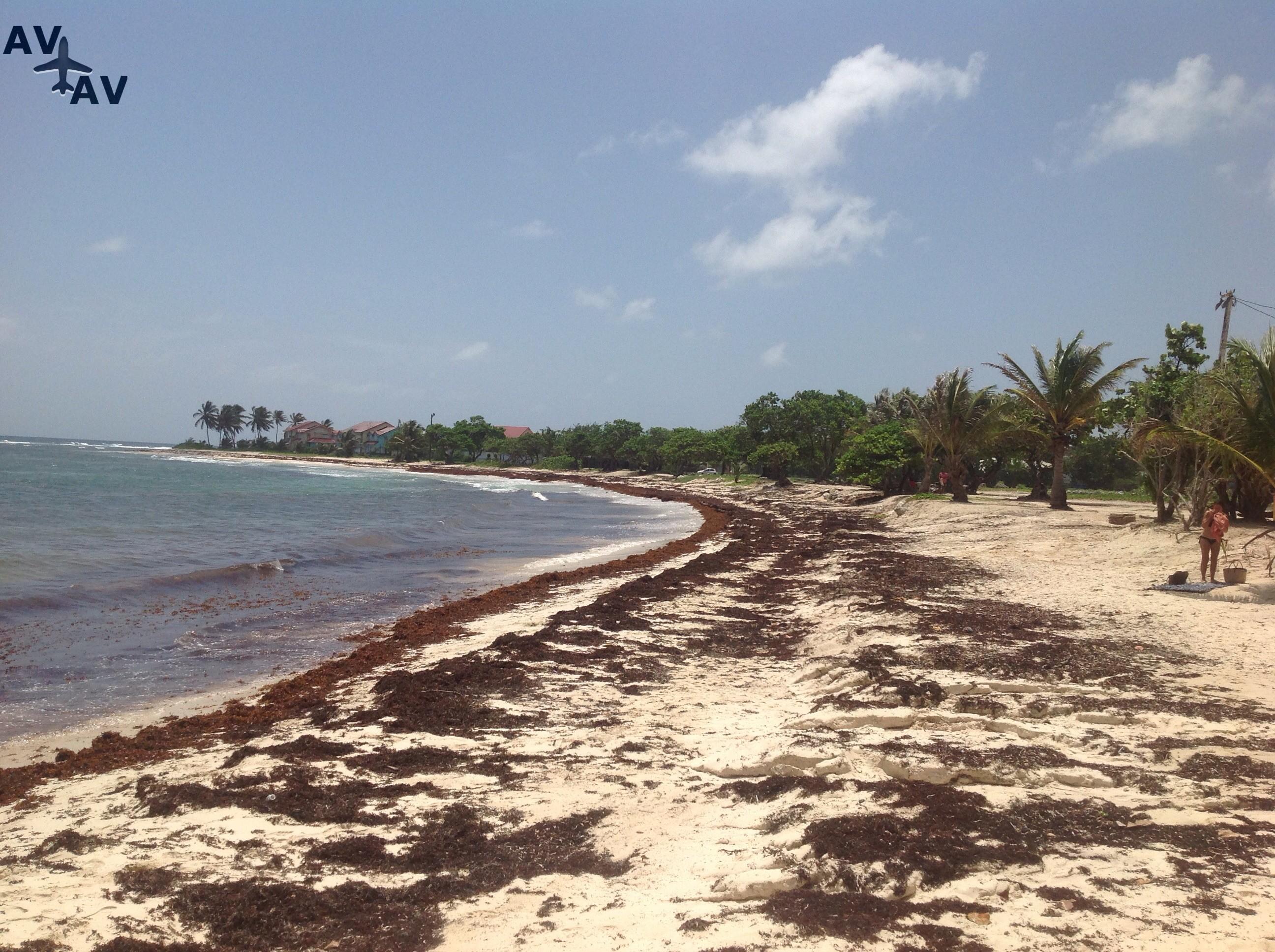 Otdyih na ostrove Gvadelupa - Отдых на острове Гваделупа
