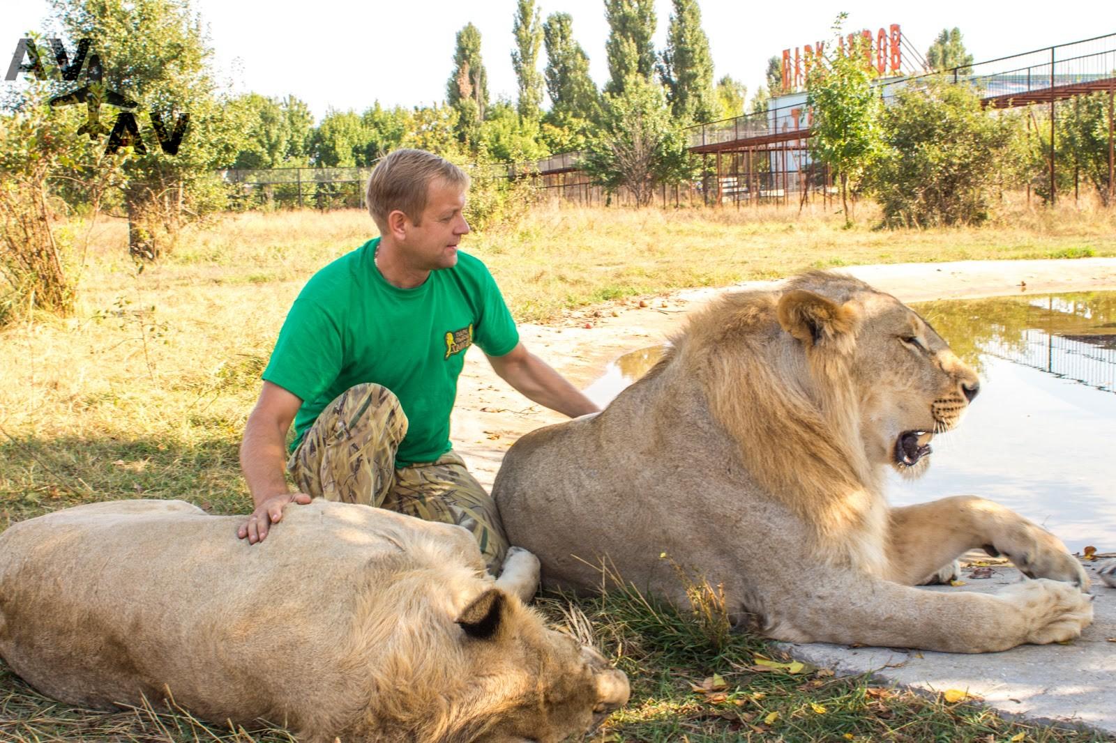 Safari v kryimskom parke lvov - Сафари в крымском парке львов