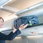 ruchnaya klad 150x150 - В аэропорту Минск обнаружили чемодан со змеями и скорпионами