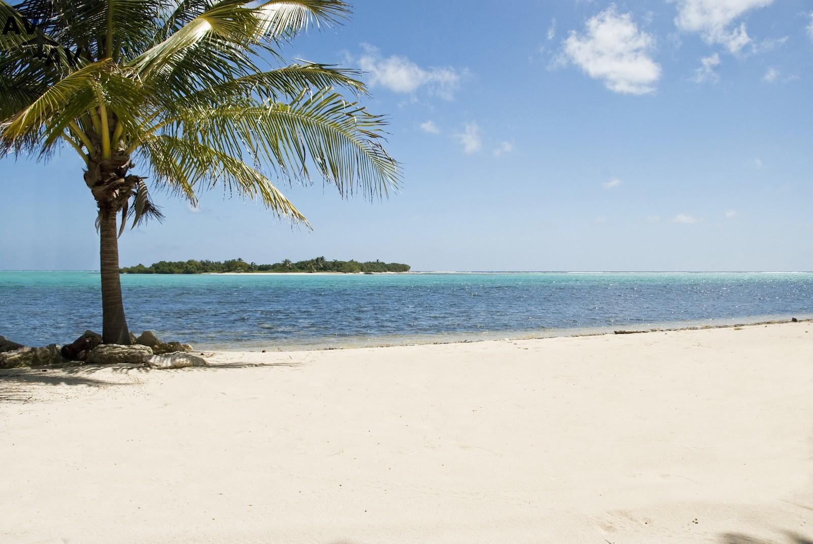 Puteshestvie na Kaymanovyi ostrova2 - Путешествие на Каймановы острова