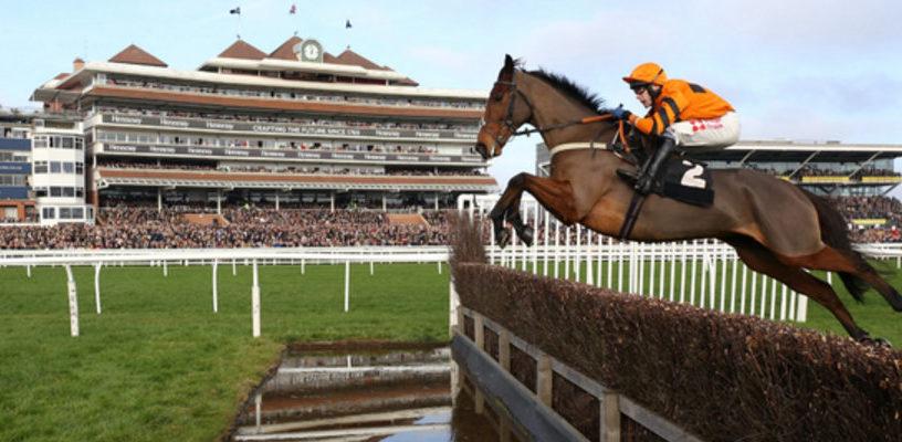 Конные забеги в Челтнем 2018