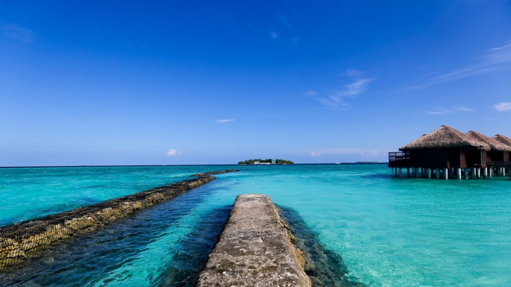 maldives 1951270 1920 1024x576 - Отдых на Мальдивах - купить билет и заказать перелет, бронирование отеля на Мальдивах