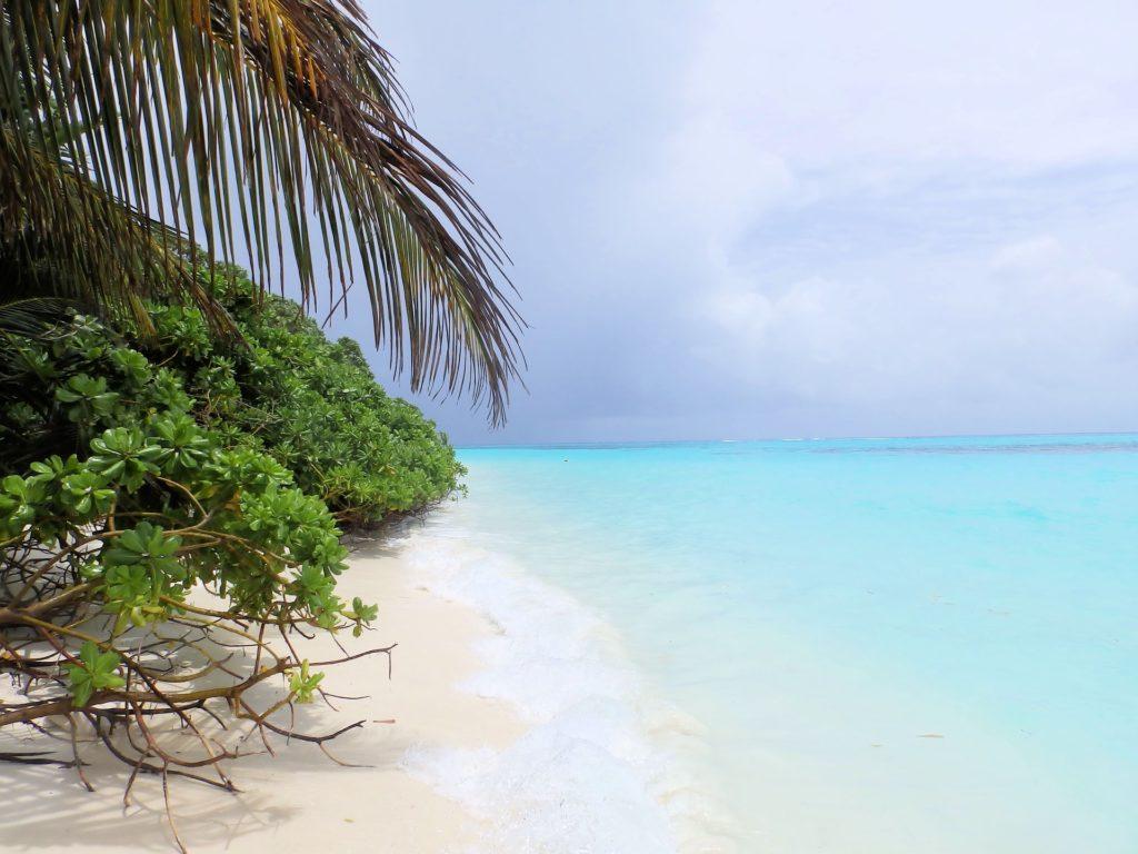 ocean 2655010 1920 1024x768 - Отдых на Мальдивах - купить билет и заказать перелет, бронирование отеля на Мальдивах