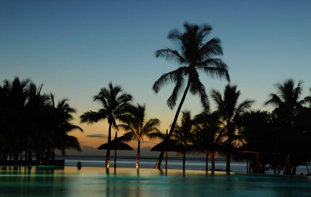 trees 2512497 1920 1024x648 - Отдых на Мальдивах - купить билет и заказать перелет, бронирование отеля на Мальдивах