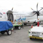 35 11 150x150 - Аэропорт Фума (Fuma) коды IATA: FUM ICAO:  город: Фума (Fuma) страна: Папуа - Новая Гвинея (Papua New Guinea)