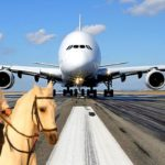 large 1025 465c4 150x150 - «Летающий дворец» принца Аль-Валида бин Талала