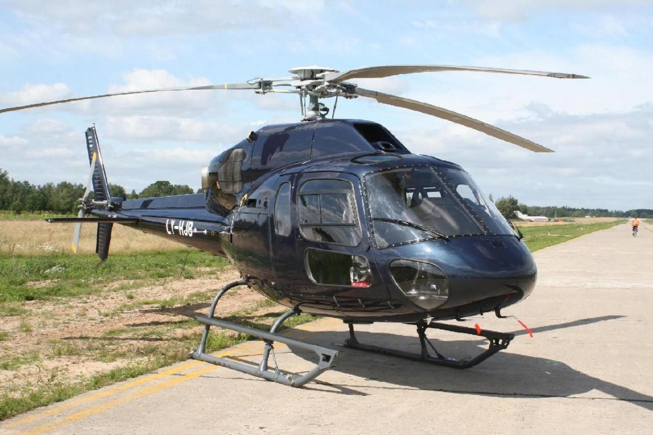 23289 - Вертолетные рейсы на горнолыжные курорты Франции: направления, цены, услуги