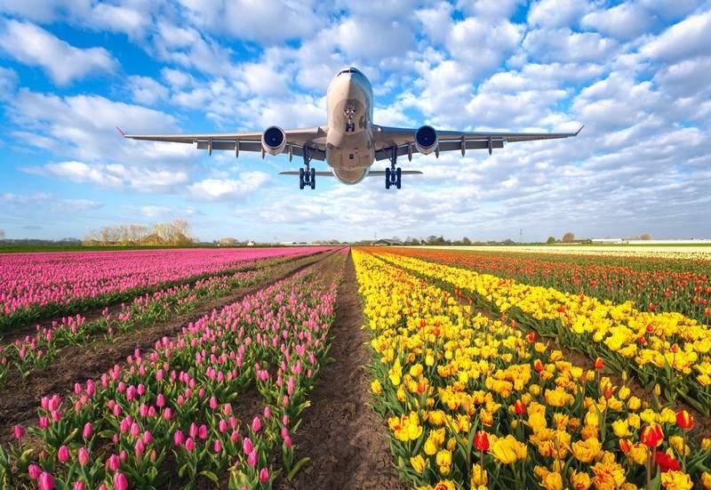 аренда самолёта в Голландии