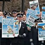 frontier.two .pilots.protest 150x150 - Лоукостер Ryanair проверит Еврокомиссия