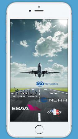 Бизнес авиация с Aviav