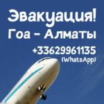 Эвакуация в Алматы из Гоа на частном самолете